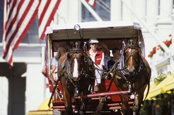 HORSE-DRAWN CARRIAGE RIDE TOUR OF MACKINAC ISLAND WITH BUFFET LUNCH