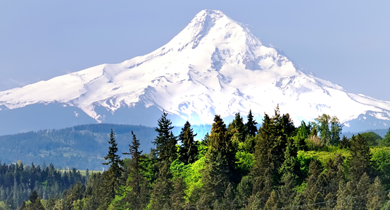 Alaska Cruise & Pacific Northwest Tour