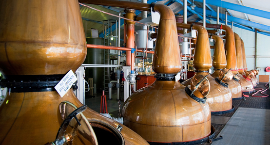 Whisky Distillery Scotland