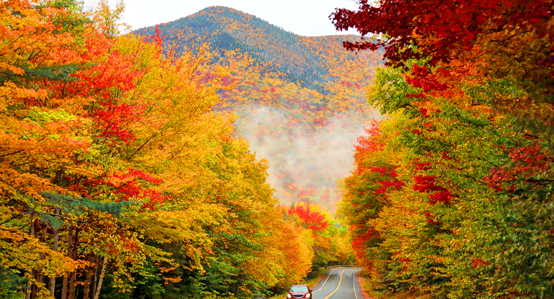 Kancamugus Highway with Fall Foliage
