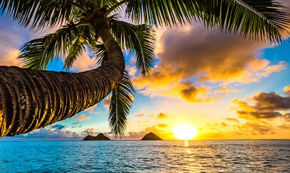 Best of Hawaii Four-Island Tour - Travel Deals